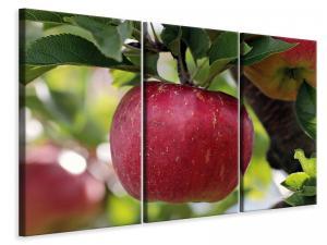 Ljuddämpande tavla - Apple in xxl - SilentSwede