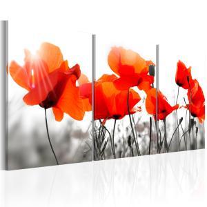 Ljuddämpande tavla - Charming Poppies - SilentSwede