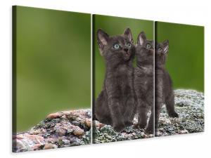 Ljuddämpande tavla - 2 black cats babies - SilentSwede