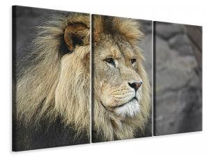 Ljuddämpande tavla - Lion head xl - SilentSwede