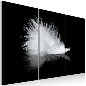 Ljuddämpande tavla - A small feather - SilentSwede