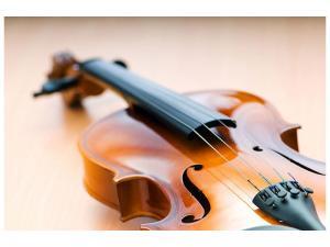 Ljudabsorberande tavla - Violin - SilentSwede