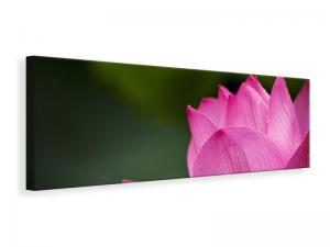 Ljuddämpande tavla - Marko lotus in pink - SilentSwede