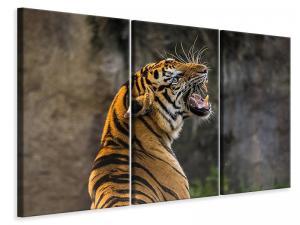 Ljuddämpande tavla - Attention tiger - SilentSwede