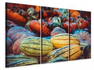 Ljuddämpande tavla - Pumpkin types - SilentSwede