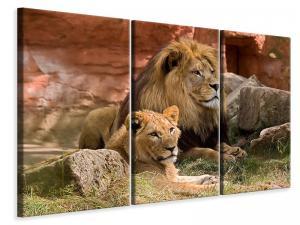 Ljuddämpande tavla - A lion couple - SilentSwede