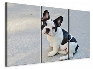Ljuddämpande tavla - Sweet french bulldog - SilentSwede