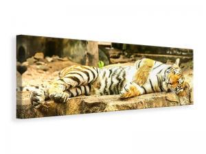 Ljuddämpande tavla - The Siberian Tiger - SilentSwede