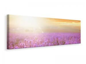 Ljuddämpande tavla - Sunset In Lavender Field - SilentSwede