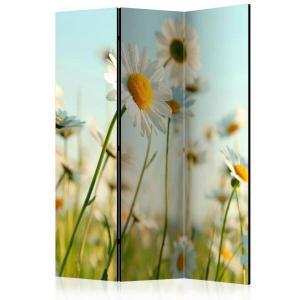 Rumsavdelare - Daisies - spring meadow - SilentSwede