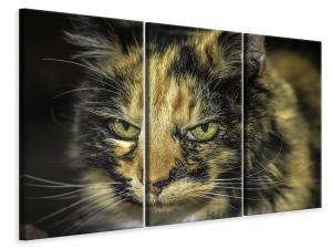 Ljuddämpande tavla - Attention cat - SilentSwede