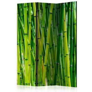 Rumsavdelare - Bamboo Forest - SilentSwede