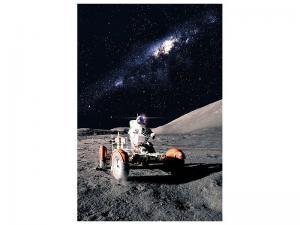 Ljudabsorberande tavla - Astronaut Work - SilentSwede