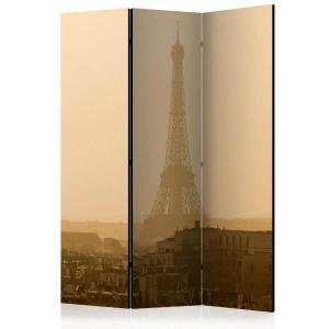Rumsavdelare - Paris at Dawn - SilentSwede