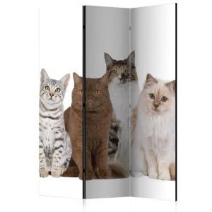 Rumsavdelare - Sweet Cats - SilentSwede