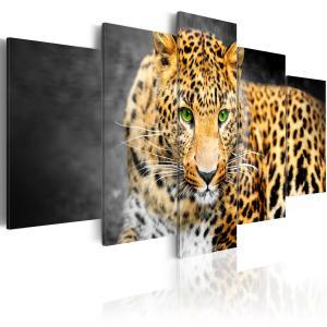Ljuddämpande tavla - Green-eyed leopard - SilentSwede