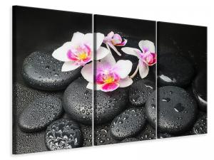 Ljuddämpande tavla - Feng Shui Orchid Zen - SilentSwede