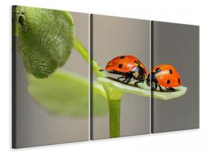Ljuddämpande tavla - 2 ladybirds - SilentSwede