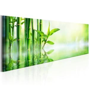 Ljuddämpande & ljudabsorberande tavla - Green Bamboo - SilentSwede