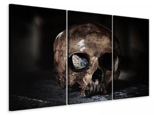 Ljuddämpande tavla - The skull - SilentSwede