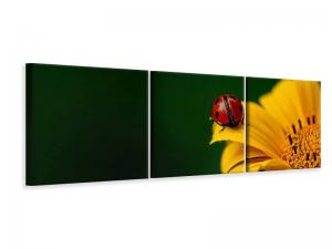 Ljuddämpande tavla - Ladybug on the sunflower - SilentSwede