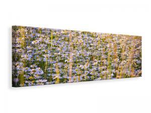Ljuddämpande tavla - A field full of camomile - SilentSwede