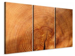 Ljuddämpande tavla - Tree rings - SilentSwede