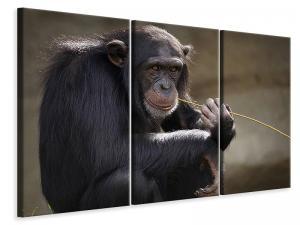 Ljuddämpande tavla - Sweet chimpanzee - SilentSwede