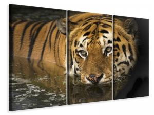 Ljuddämpande tavla - Tiger in the water - SilentSwede