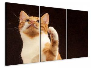 Ljuddämpande tavla - Attention clever cat - SilentSwede