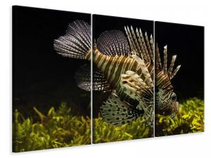 Ljuddämpande tavla - Lion fish - SilentSwede
