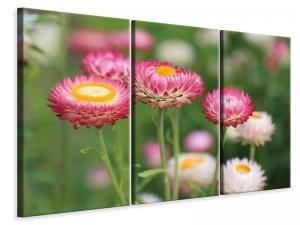 Ljuddämpande tavla - Flowers of spring - SilentSwede