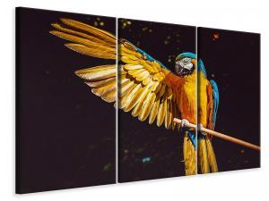 Ljuddämpande tavla - The macaw - SilentSwede