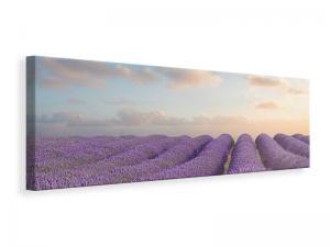 Ljuddämpande tavla - The Blooming Lavender Field - SilentSwede