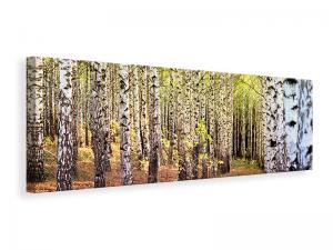 Ljuddämpande tavla - The path between birches - SilentSwede