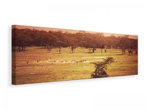 Ljuddämpande tavla - Picturesque Africa - SilentSwede