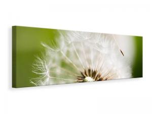 Ljuddämpande tavla - Blowball Dandelion - SilentSwede